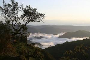 virunga tourist free adventure travel destination