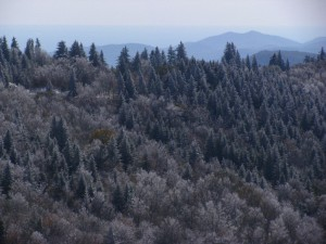 adventure holidays in Transylvania