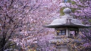 spring travel destinations