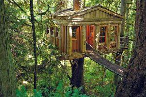 nature-based accommodation